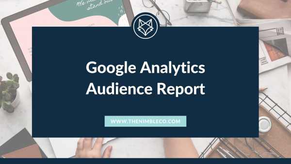 Google Analytics Audience Reports Blog Title
