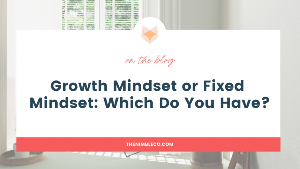 Growth Mindset or Fixed Mindset